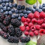 Forskellige friske bær med Toppits